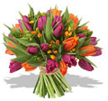 Orange and Fuchsia Tulip Bouquet #123456